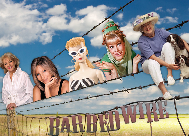 Barbed Wire Integrating Project 2 -- PUN Spring 2015