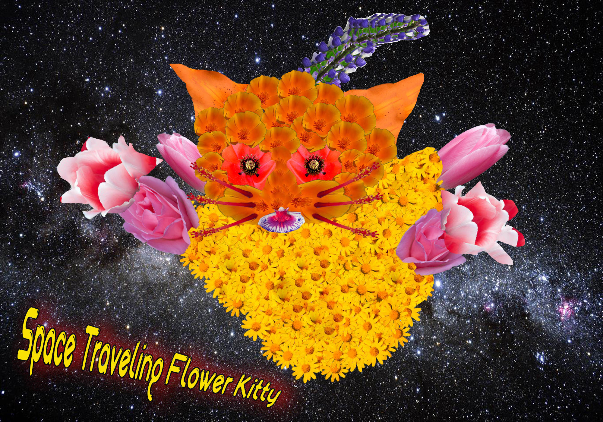 Elorza_N_C1Project_Space KittyFlattened200ppi