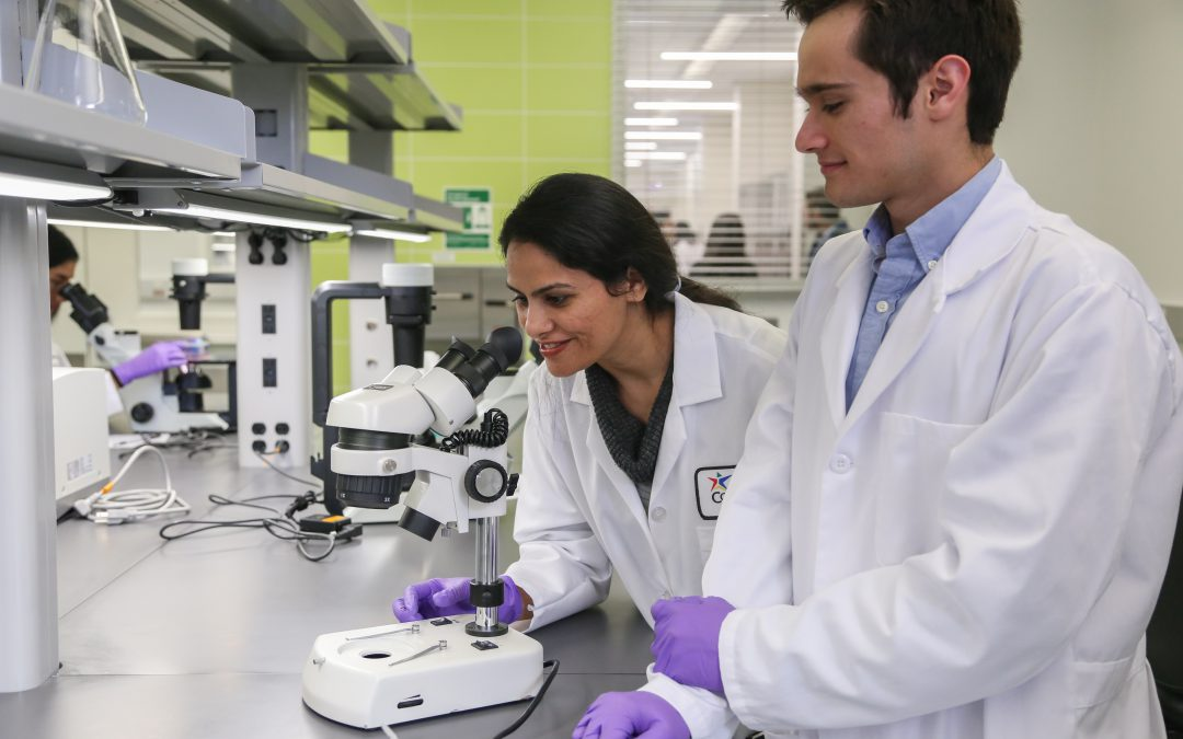 image of biotech students working in lab at ACC Biocience Incubator