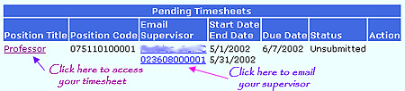 ACCeTime Timesheet Tab